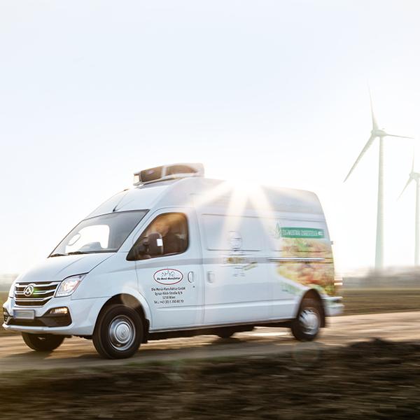 Elektrofahrzeug CO2 Einsparung